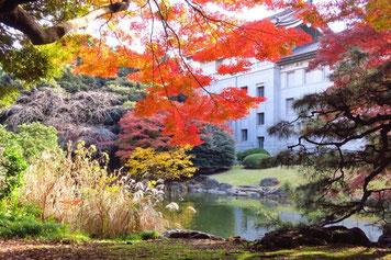 東博の日本庭園。昨日はこのお庭にある茶室のひとつ転合庵へ。