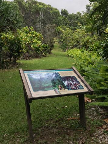 Amy Greenwell Garden Big Island Hawaii