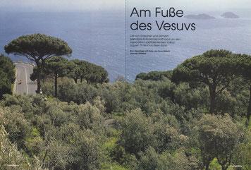 Amalfitana erleben. Über ein grünes Dach aus Pinien und Küstenmacchia geht der Blick weit hinaus auf den Golf von Neapel