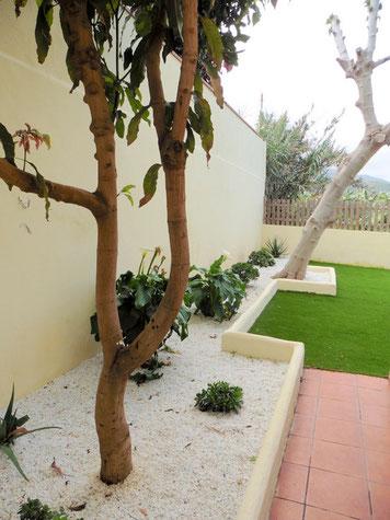 Seitliche Terrasse/Garten