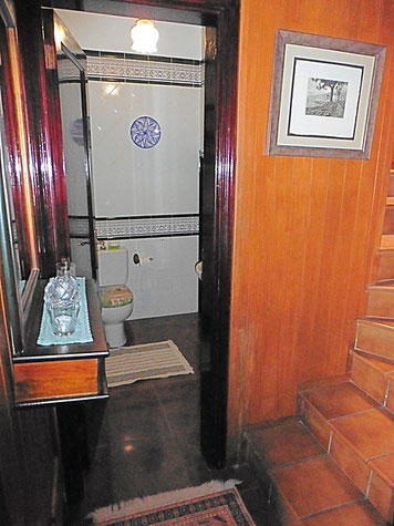 Gäste WC und Treppenaufgang