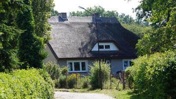 ohne WLAN Ferienwohnungen auf Rügen, erholsamer Urlaub in der Natur