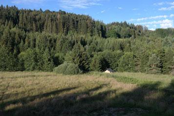 idyllisches Zelten in naturnaher Umgebung im Funkloch, Urlaub, Ferien