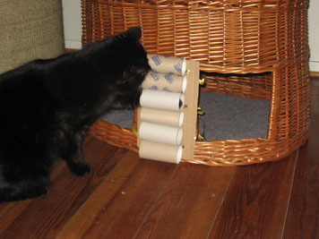 auch eine andere Befestigungsmöglichkeit: Katzenkorb oder Rattanstuhl rechts.