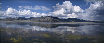 South Platte – tratto tra Spinney Mountain ed Elevenmile Reservoirs