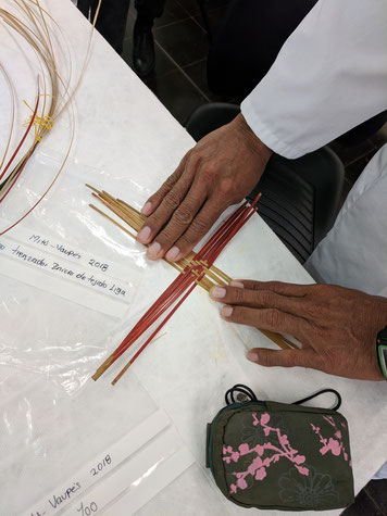 Hands of a knowledge holder from Mitú, Columbia, introducing basketry materials and manufacturing techniques to inform future conservation treatments. © Diana Gabler, 2017.