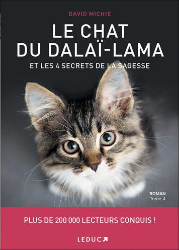 le chat du Dalai-Lama tome 4, Pierres de Lumière, tarots, lithothérpie, bien-être, ésotérisme