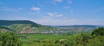 Schöner Blick auf das Moseltal oberhalb von Wintrich