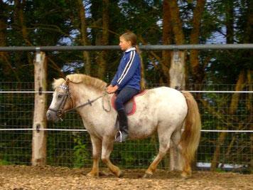 Pony reiten, Ramsau