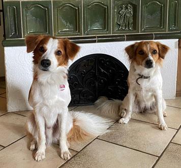 Balu und Bea