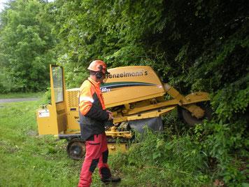 Baumpflege Baumschnitt Pflanzung Strunkfräse Stockfräse Holzhacker Henzelmann