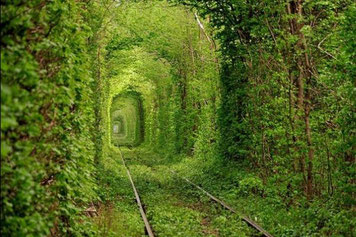 Tunnel of Love in Klevan Ukraine