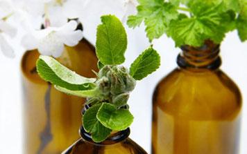shop o line olio vegetale naturale e oli essenziali puri