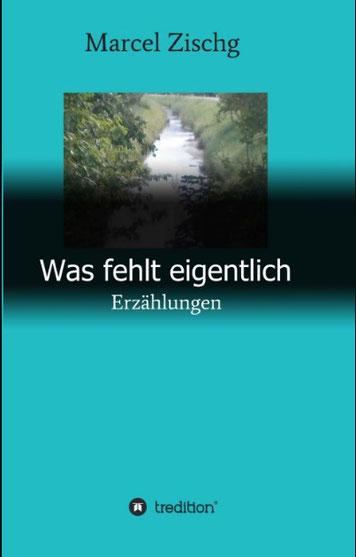 Was fehlt eigentlich. In zwanzig Kurzgeschichten schildert der Südtiroler Autor Marcel Zischg Beziehungsgeschichten und seelische Konflikte Jugendlicher und junger Erwachsener.