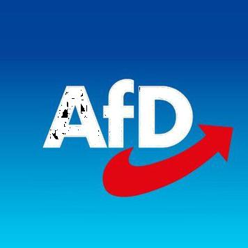AfD Alternative für Deutschland inoffizieller Infokanal