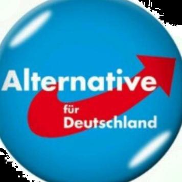 AfD Alternative für Deutschland Infokanal