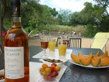 accueil vignoble roquefort des corbières dans l'Aude