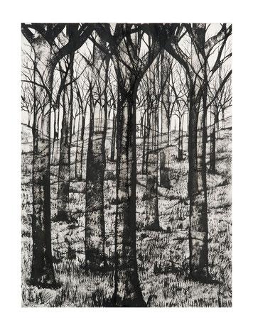 (c) David Décamp Courtesy Galerie La Forest Divonne