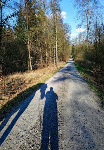Herr Schwarztier und ich im Wald