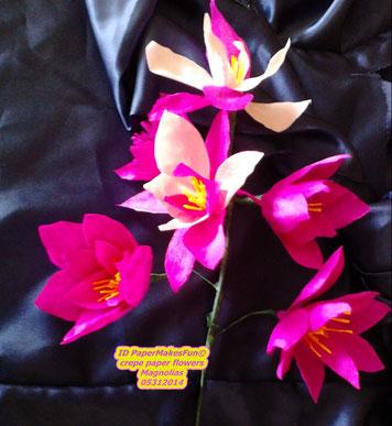 crepe paper - flowers - Magnolias