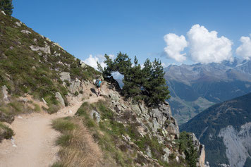 Trient, Aiguille d'Argentière, Aiguille du Chardonnet, Aiguille Verte, Les Drus und Mont Blanc, Aguilles du Tour, Aiguille du Tour, traverse, überschreitung, arête de la table, Südgipfel, Cabane du Trient, la Breya