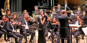 """Das Staatsorchester Braunschweig spielt ein Programm unter dem Motto """"Das Klassische"""". Archivfoto: Martin-Winrich Becker"""