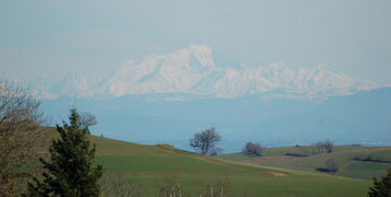 Vue sur le Mont Blanc depuis mes terres du Mont Morin