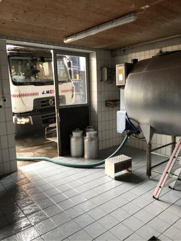 Vom Bauernhof direkt ins Fahrzeug: Milchabholung in Meilen. Bild: Tudor Dialog