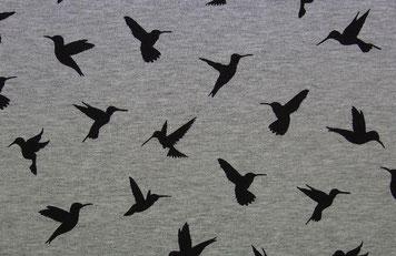 Jersey Kolibri