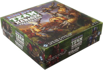 folded space insert organizer Blood Bowl Team Manager foamcore LCG