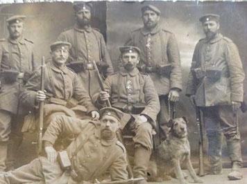 Kriegshund im Ersten  Weltkrieg                   Quelle: A. und W. Liebischer