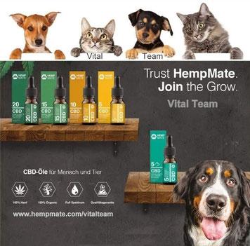 CBD Öle und Dragées für Mensch und Tier von HempMate