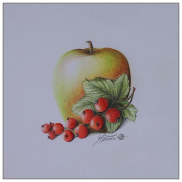 Apfel - Johannisbeere
