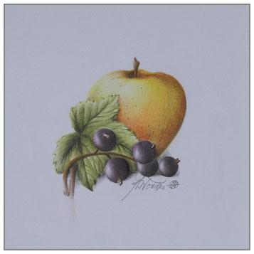 Apfel - schwarze Johannisbeere