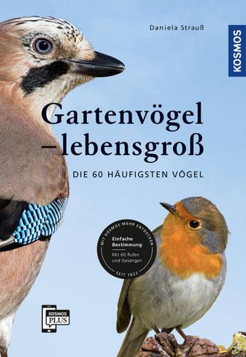 Gartenvögel lebensgross