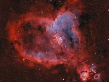 Heart Nebula - IC1805