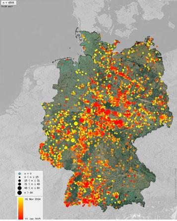 Hinweis: In unserem Kreis gibt es keine zählenden Personen, daher ist hier nur ein grundsätzlicher Überblick möglich (Quelle: ornitho.de)