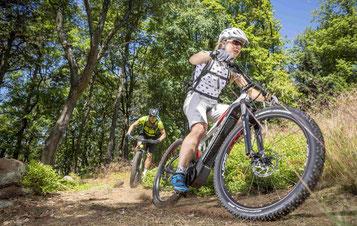 Hercules e-Bikes und Pedelecs in der e-motion e-Bike Welt in Worms