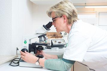 Arbeit im Labor, Praxis Am Meldauer Berg in Verden