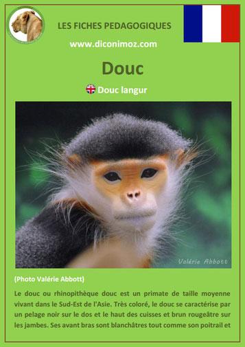 fiche animaux meconnus pdf douc imprimer telecharger