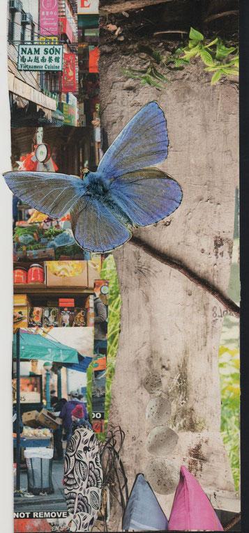 Collage aus Papier, Blauer Schmetterling vor grauer Wand in chinesischer Umgebeung