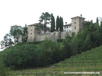 """Samstag: Nachmittag geht es in das Weinbaugebiet von Collio, das sich von Friaul bis nach Slowenien erstreckt. Dort werden mehr als 400 Rebsorten aus der ganzen Welt angebaut, aus denen der Friedenswein """"Vino della Pace"""" gewonnen wird."""