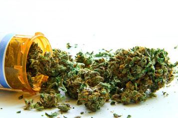 marihuana medicinal, semillas marihuana medicinal, marihuana terapeutica