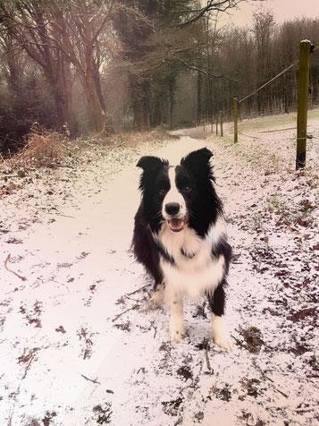 Schnee in Leichlingen. Und das im Winter!!!!