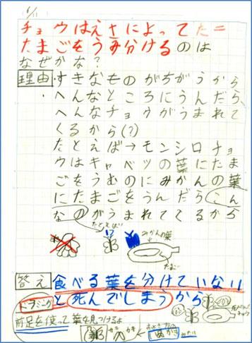 図2:3年生児童の理科のノート記述