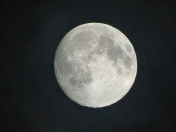 一昨日撮影したSuper moon 昨夜は雲でブロックされました。