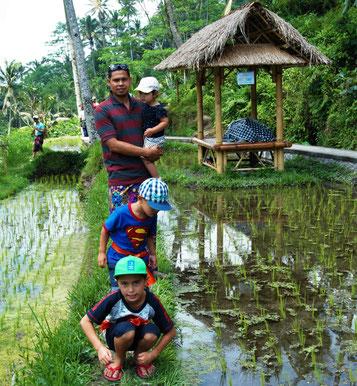 Wandeling door de rijstvelden bij Gunung Kawi op Bali