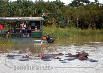 Rondreis Zuid-Afrika Safari Bobotie Reizen St Lucia nijlpaarden