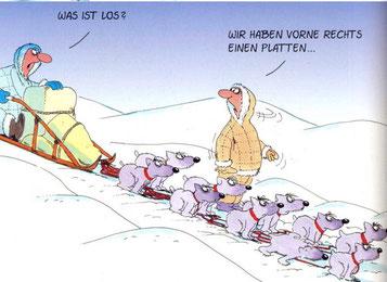 copyright bei Ulli Stein