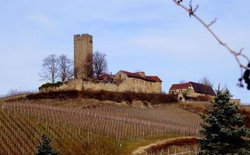 Die mächtige Ruine der Ravensburg hoch über Sulzfeld. Seit ihrer Ersterwähnung 1231 in ununterbrochenem Besitz der Freiherrn Göler von Ravensburg. Gemeinsam mit dem Steinsberg beherrscht sie den Kraichgau. Foto privat